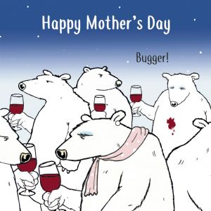 CS17  Funny Card For Mothers Day Bugger Bear